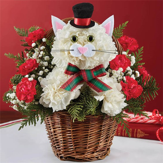 1-800-FLOWERS® CHRISTMAS CAROLING CAT™ | Bouquet Florist & Gifts