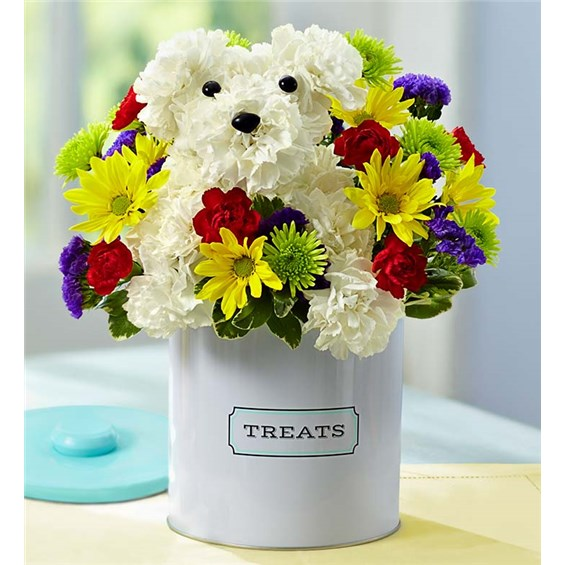 1-800-FLOWERS® A-DOG-ABLE® | Bouquet Florist & Gifts